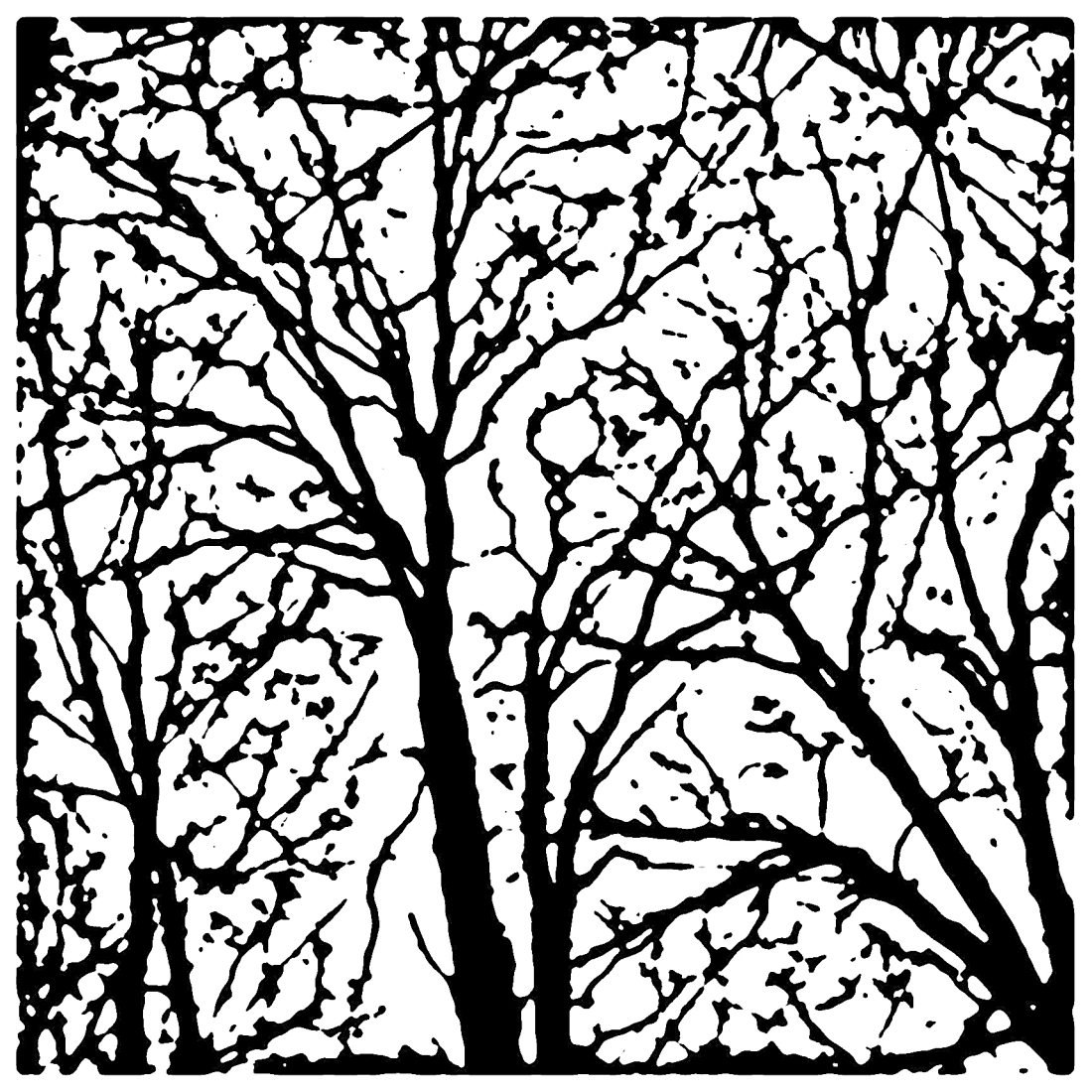 Trees Linocut filter no border